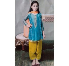 blue-2-pc-embroidered lawn